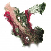 Abstract beige,black,green,red watercolor strokes, may be used a — Stockfoto