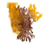 Abstract brown, yellow hand drawn watercolor blot insult Rorscha — Stock Photo