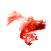 Stain with watercolour red paint stroke watercolor isolated — Stock Photo