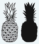 Ripe tasty pineapple — Stock Vector