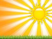 Lato tło — Wektor stockowy