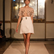 Elisabetta Franchi - Milan Fashion Week Spring-Summer 2015 — Stock Photo #53927827