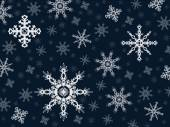 Vector snowflakes on a blue background — Stock Vector
