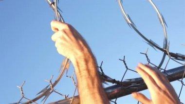 Razor Wire Fence Hands Grabbing — Stock Video