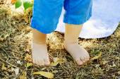 Close up of a cute baby feet  — Stock Photo