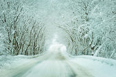 Winter road in the countryside — Foto Stock