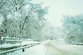 Winter road in the countryside. Landscape. — Foto Stock