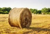 Kulaté balíky slámy v sklizených polí — Stock fotografie