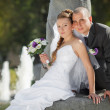 Groom and  bride near the fountain — Stock Photo #61957825