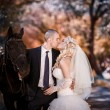 Kiss of the groom and the bride during walk in their wedding day against a black horse — Zdjęcie stockowe #61988987