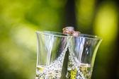Vigselringar ligga på champagneglas — Stockfoto
