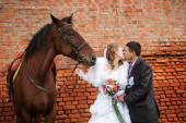 Groom and the bride during walk in their wedding day against a brown horse and old brick wall — Stock Photo
