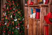 Украшенные елки с подарком — Стоковое фото