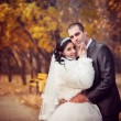 The groom and the bride in autumn park walk near trees with yellow leaves — Stock Photo #77108837