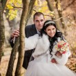 The groom and the bride in autumn park walk near trees with yellow leaves — Stock Photo #77108861