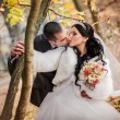 The groom and the bride in autumn park walk near trees with yellow leaves — Stock Photo #77108903