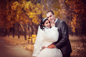 The groom and the bride in autumn park walk near trees with yellow leaves — Stock Photo