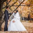 The groom and the bride in autumn park walk near trees with yellow leaves — Stock Photo #77367180