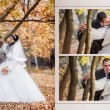 The groom and the bride in autumn park walk near trees with yellow leaves — Stock Photo #77745076