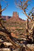 Monument Valley — Stock fotografie