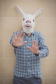 Rabbit mask absurd man — Stock Photo