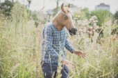 Absurd man in horse mask — Stock Photo