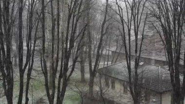 Snowing winter landscape — Stock Video