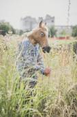 Horse mask absurd man — Stock Photo