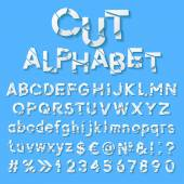 Paper alphabet with cut letters — Stock Vector