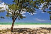 La orilla de una isla tropical con palmeras y arena blanca. M — Foto de Stock