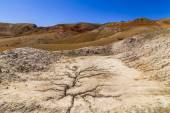 Amazing landscape of the desert at the foot of the mountains — Stock Photo