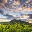 View of the vineyards and mountains in the background of the sun — Stock Photo #78370992