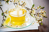 Glass tea cup cherry blossoms. — Stock Photo