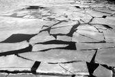 Ledu na řece — Stock fotografie