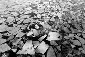 Is på floden — Stockfoto