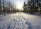 Winter landscape. track from wide skis — Stock Photo