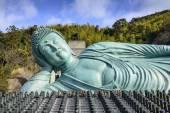 Reclining Buddha of Fukuoka — Stok fotoğraf