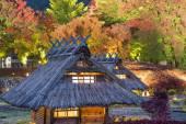 Village Replica in Japan — Stock Photo
