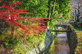 Philospher's Path in Kyoto, Japan — Stock Photo