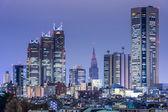 Shinjuku, Tokyo, Japan Cityscape — Stockfoto