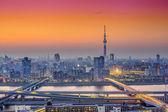 Tokyo, Japan City Skyline at Dusk — Stock Photo