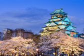 Osaka Castle in the Spring — Stock Photo