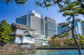 Tokyo Imperial Moat and Cityscape — Stock Photo