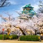Osaka Castle in Spring — Stock Photo #63333349