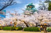 Osaka Castle in Spring — Stock Photo