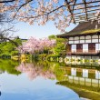 Heian Temple Garden — Stock Photo #65708719
