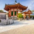 Pavilion in Nara Japan — Stock Photo #66972411