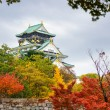 Osaka Castle in Autumn — Stock Photo #66972421