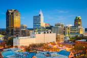 Raleigh, North Carolina Skyline — Stock Photo