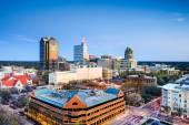 Raleigh, North Carolina Downtown Skyline — Stock Photo